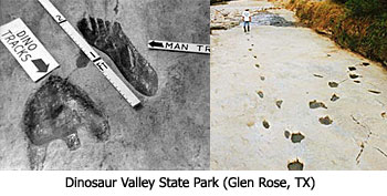 dinos_footprints.jpg