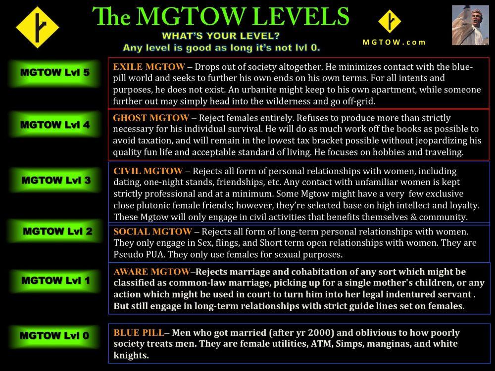 mgtow levels.jpg
